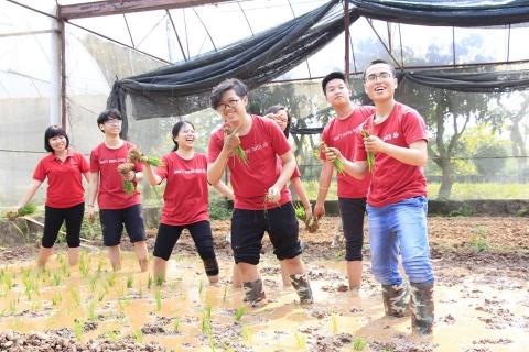 Teens Đoàn Thị Điểm với chương trình trải nghiệm Một ngày làm nông